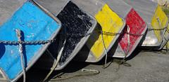 Palette de couleurs pour optimiste (jmt-29) Tags: france jaune rouge noir bretagne bleu brest bateau voile nautisme finistere optimiste