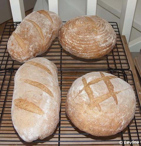 Vloerbrood, gebakken door deelnemers workshop