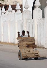 Zanzibar Barrowboy
