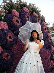 Wall of flowers (Paula Satijn) Tags: flowers white haarlem beauty tv shiny dress cd skirt parade parasol tranny transvestite gown satin silky bloemencorso