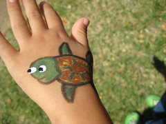 Owen's finished turtle