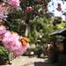遅咲きの季節