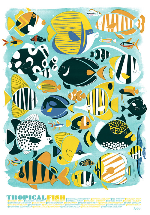 'Tropical Fish' litho print by Peskimo