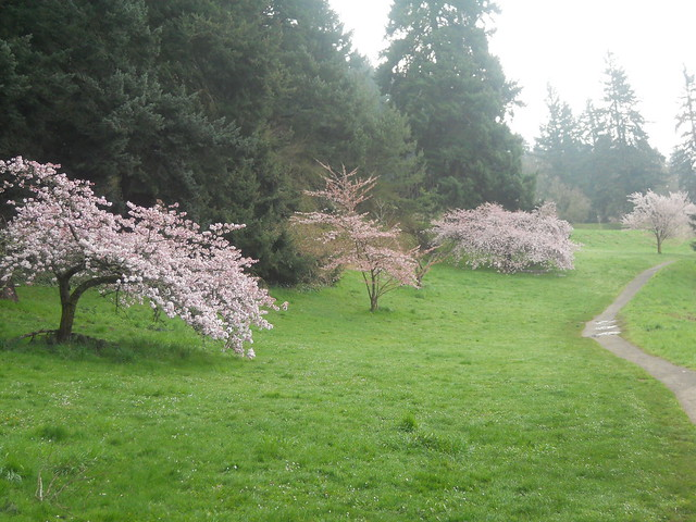 spring2011 207