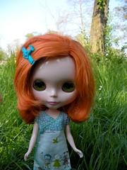 juno in the grass (108/365)
