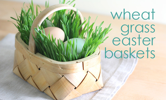wheat-grass-easter-baskets-tx