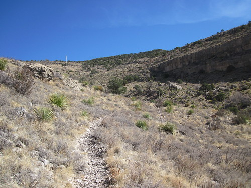 Picture from Dog Canyon, New Mexico