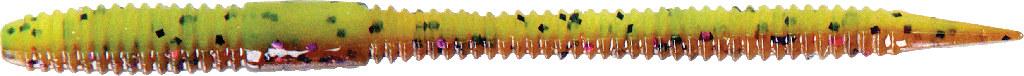 Spadetail Worm