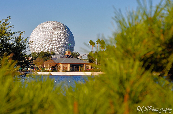 Spaceship Earth Peeking Through The Trees...