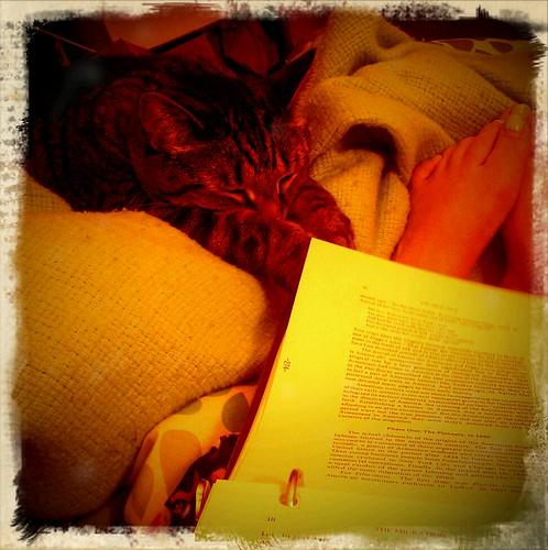 studyin' by hello jenny