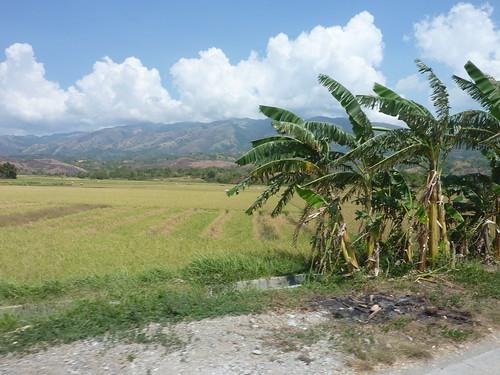 Mindoro-Sablayan-Sabang (93)