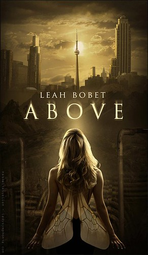 2012 TBA   ABOVE by Leah Bobet