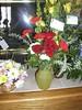 Flowers (Niki Gunn) Tags: austin memorial missouri april 2011 olympusc4040z openhouse2011