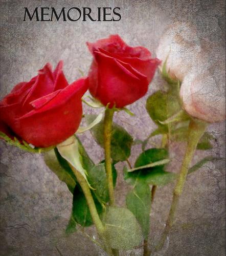 MEMORIEES