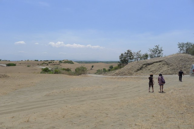 La Paz Sand Dunes (5)