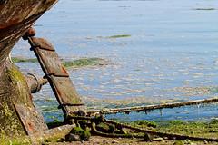 IMG_0983-M_Flickr.jpg (Elisa_Rv) Tags: france bretagne bateau rance moyendetransport