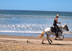 Cowboy Josh: Rancho Chilamate (Out of the Blue Photography) Tags: ocean horse beach del cowboy san do waves tour juan pacific boots things riding sur nicaragua cowgirl adrenaline horseback saddle horsebackriding survivor canter rancho gallop ecotour chilamate ranchochilamate horsebackrideonthebeach