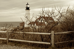 Through the Twisting Branches (SunnyDazzled) Tags: lighthouse weather fence easter moody branches maine desaturated thorns capeelizabeth portlandhead fortwilliams