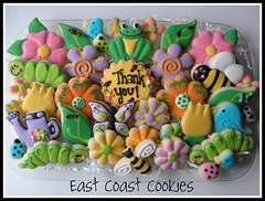 Spring and Bug Cookie Platter (East Coast Cookies) Tags: decoratedcookies frogcookies bugcookies ladybugcookies flowercookies springcookies beecookies birdcookies caterpillarcookies