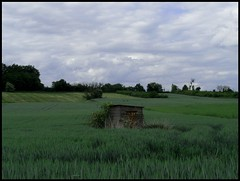 remote (Machicouly) Tags: field countryside champs campagne cabane