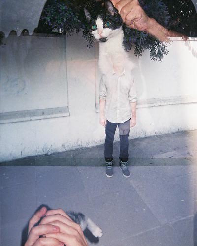 cat headed boy