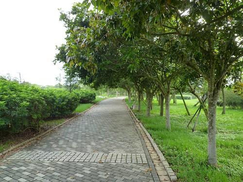 taichung-metropolitan-park-24