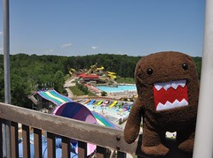 Domo overlooks Splashin' Safari