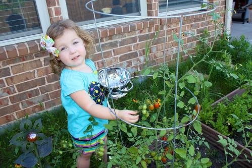 Garden Pickin'