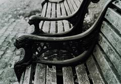 Monochrome bench (Nikonsnapper) Tags: church monochrome bench 50mm nikon nikkor f5 ilford fp4 wantage 149365 project36612011