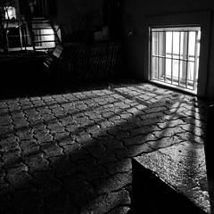 Negative (ybrise) Tags: shadow blackandwhite window night stairs dark backyard grating cellar thepinnaclehof tphofweek103