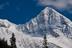 Selkirk Mountains in Early Spring 4 (LongInt57) Tags: blue trees winter sky cloud white mountain snow canada mountains tree green rock clouds forest landscape spring rocks hill rocky hills getty forests selkirk gettyimages selkirks scenid