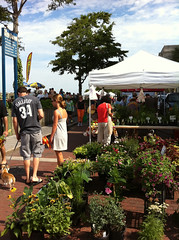 Downtown Wilmington Farmer's Market