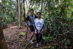 Visitors 0531 (Ursula in Aus) Tags: fern sumatra indonesia unesco bukitlawang gunungleusernationalpark earthasia