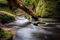 Follow Me Over There (_Shak_) Tags: longexposure finnichglen scotland burn stirlingshire brook devilspulpit stream river