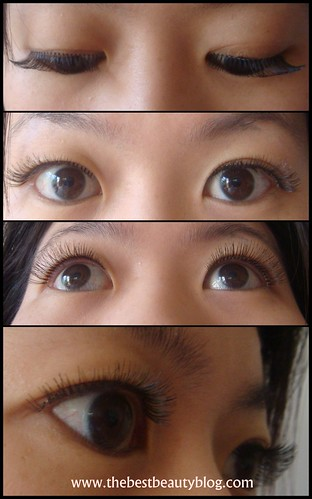 Photo of ARDELL lashes