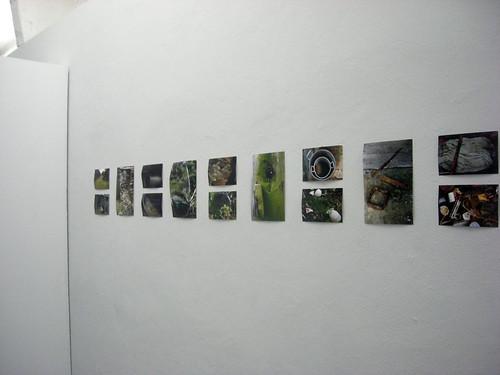 Cá by Manuela Barile
