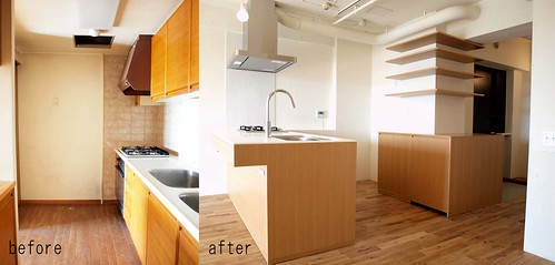 Renovation for the existing condominium_03