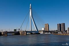 "Erasmusbridge ""The Swan"" (BraCom (Bram)) Tags: bridge skyline buildings rotterdam ships brug euromast erasmusbrug theswan dezwaan bracom"