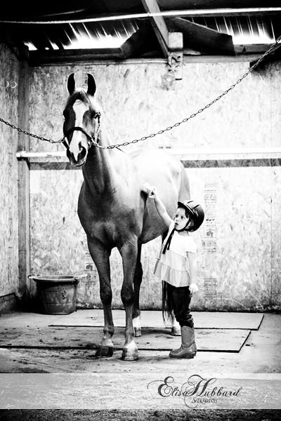 pw_horses_ehstudios_renee2
