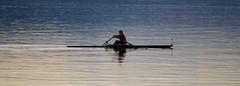 Dawning wake-up (t) Tags: lake row rowing wakeup ruderer engezrichzrichswitzerland seeengezrichzrichswitzerland