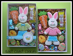 Segmented Bunny Cookie Gift Box -2011 (East Coast Cookies) Tags: bunnies cookies decoratedcookies bunnycookies carrotcookies eggcookies eastercookiebox