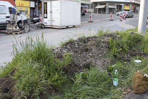 Angepflanzt Schutthügel Rosengartenstrasse