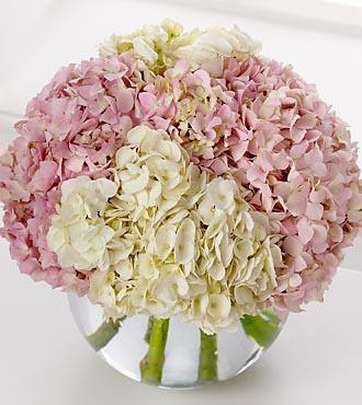 FTD-Hydrangea-Bouquet