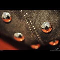Ladybag (guido ranieri da re: work wins, always off) Tags: nikon ladybug indianajones coccinella ladybag homeshots d700 nonsonoglianniamoresonoichilometri guidoranieridare borsadadonna