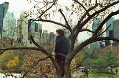sylvan city (scott w. h. young) Tags: nyc newyorkcity autumn trees film skyline 35mm buildings centralpark manhattan climbing sylvan