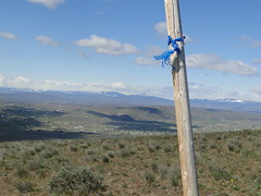 Pole with a blue ribbon on Yakima Skyline trail.