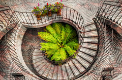 The Downward Spiral (cstout21) Tags: sf sanfrancisco california ca travel flowers chris vacation urban blackandwhite plants usa black green texture stairs us view unitedstates floor landmark textures embarcadero bayarea westcoast hdr highdynamicrange stout embarcaderocenter ngoc canon60d texturedimage stoutandstout northamera