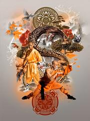 Shaolin (Che McPherson - Pixel Pimps) Tags: photoshop design manipulation montage
