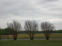 2011-05-01 009
