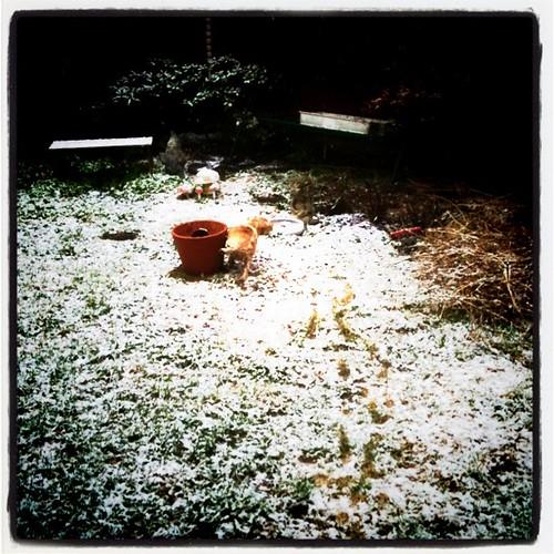 may 3, snowing...